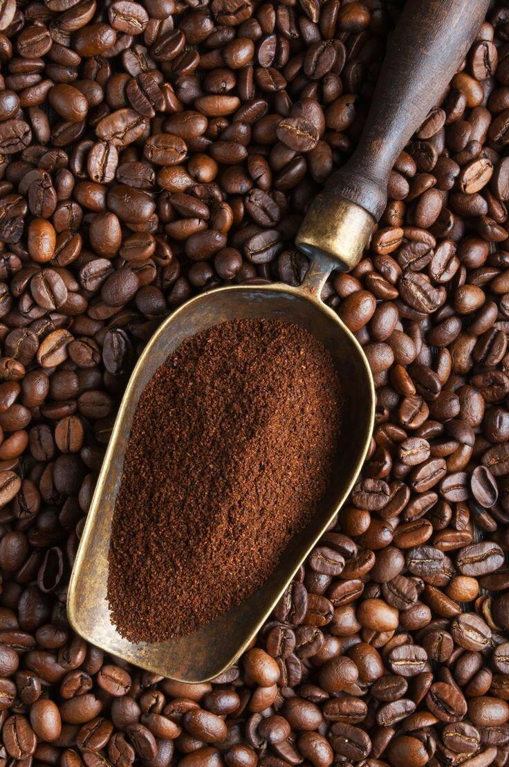 Москва<br/>Сеть кофеен<br/>370-400 руб/ч